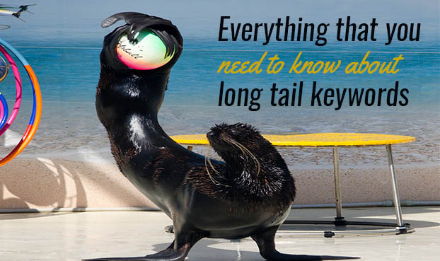 learn about long tail keywords